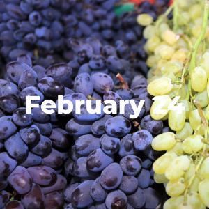 February 24