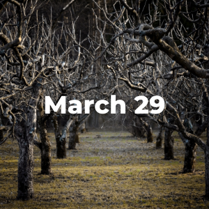 March 29